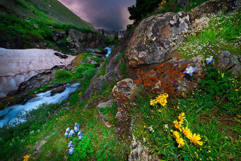 American Basin, San Juan Mountains (range of the Rocky Mountains), Southwest Colorado USA
