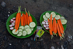 Locally Grown Cucumbers, Radishes and Carrots with Truffle Salt, Gossip Island, San Juan Islands, Washington, US