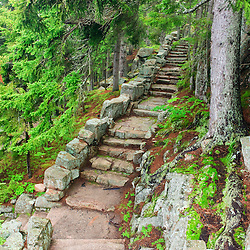 A stone staircase at the Thuya Gardens in Northeast Harbor, Maine.
