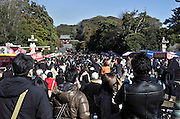 crowd at the Hachimangu shrine Kamakura Japan