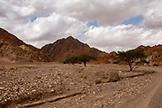 Nahal Shelomo (Salomon) a Wadi in the Eilat Mountains, Israel