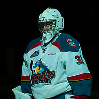 013018 Medicine Hat Tigers at Kelowna Rockets