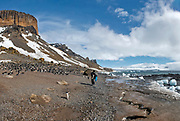 Brown Bluff and the Tabarin Peninsula (Antarctic Sound) is a basalt tuya formed in the past 1 million years. The site, which is a well-known landing site in the area, is home to thousands of Gentoo and Adelie penguins.