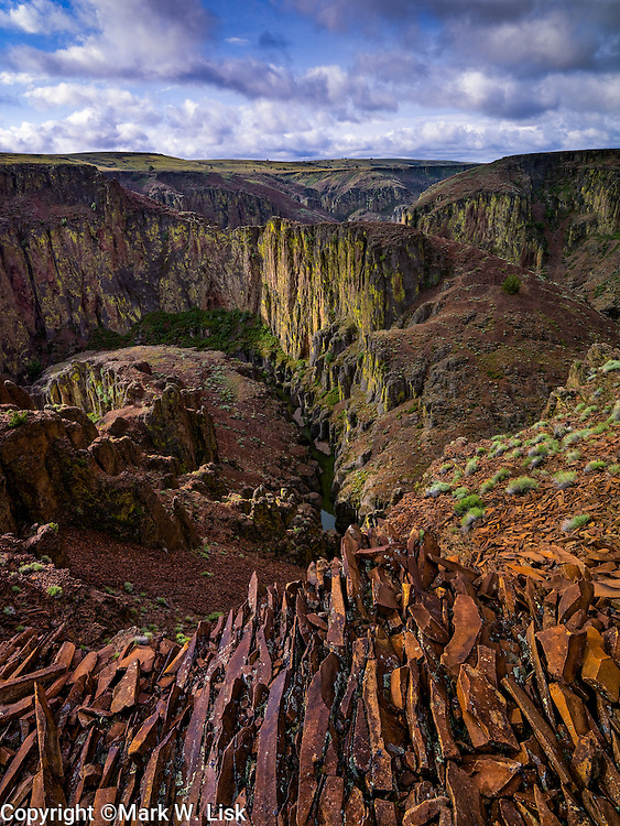 Dickshooter Creek cut deep into Black Canyon near its confluence with Deep Creek in the Owyhee Canyonlands Wilderness.