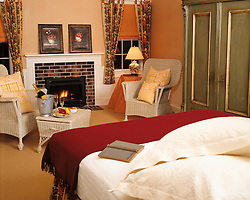 fireplace. Master Bedroom
