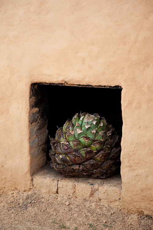 """Earthen Agave Oven 3"" - This agave and earthen oven were photographed near San Sebastian, Mexico."