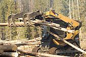 Idaho: Salmon-Challis National Forest