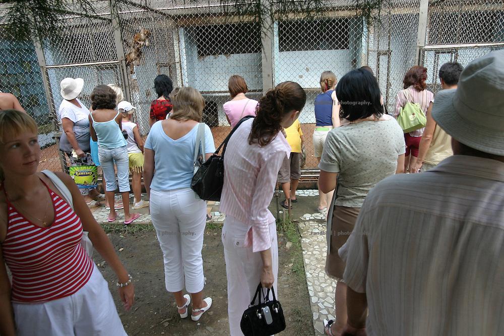 Georgien/Abchasien, Suchumi, 2006-08-25, Russische Touristen schauen gespannt in die Affenkäfige.Das Affeninstitut in Suchumi war in der Sowjetzeit ein grosses Forschungsinstitut. Hier wurde u.a. am Rhesusaffen geforscht. Im Krieg wurde das Institut stark beschädigt und viele Tiere befreiten sich. Heute sind die verbliebenen Affen eine Touristenattraktion. Abchasien erklärte sich 1992 unabhängig von Georgien. Nach einem einjährigen blutigen Krieg zwischen den Abchasen und Georgiern besteht seit 1994 ein brüchiger Waffenstillstand, der von einer UNO-Beobachtermission unter personeller Beteiligung Deutschlands überwacht wird. Trotzdem gibt es, vor allem im Kodorital immer wieder bewaffnete Auseinandersetzungen zwischen den Armee der Länder sowie irregulären Kämpfern. (Russian tourists viewing into to ape cages. The Monkey institut of Suchumi was a famous institution of science. The Rhesus monkey was one of the main tasks. DUring the war the institut became badly damaged and many apes fleed. Today the residual monkeys become a attraction for tourists. Abkhazia declared itself independent from Georgia in 1992. After a bloody civil war a UNO mission observing the ceasefire line between Georgia and Abkhazia since 1994. Nevertheless nearly every day armed incidents take place in the Kodori gorge between the both armys and unregular fighters)