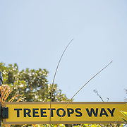 July 13-16, 2016, San Diego, CA:<br /> Treetops Way at the San Diego Zoo during a trip to San Diego, California Wednesday, July 13 to Saturday, July 16, 2016. <br /> (Photos by Billie Weiss)