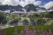 Wildflowers and Goode Mountain and Goode Glacier in one frame.  Breathtaking views greet hikers near the end of the seven-mile North Fork Bridge Creek Trail that ends tucked up up against the 9,000 ft. high Mount Logan.  (Steve Ringman / The Seattle Times)