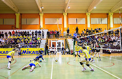 Players of Luka Koper during volleyball match between Nova KBM Branik Maribor and OK Luka Koper in Final of Women Slovenian Cup 2014/15, on January 18, 2015 in Sempeter v Savinjski dolini, Slovenia. Photo by Vid Ponikvar / Sportida