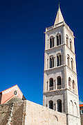 St. Donatus Church and St. Anastasia Cathedral bell tower, Zadar, Dalmatian Coast, Croatia
