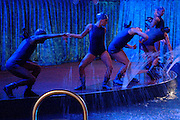 Cast members perform in the aqua show onboard the cruise ship Oasis of the Seas. The ship, currently the largest in the world, is owned by Royal Carribean Cruise Line.