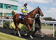 Jockey Noel Garbutt on Normans's Star in the parade ring before the 2.50 race at Brighton Racecourse, Brighton & Hove, United Kingdom on 10 June 2015. Photo by Bennett Dean.
