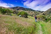 Hiker in Scorpion Canyon, Santa Cruz Island, Channel Islands National Park, California USA