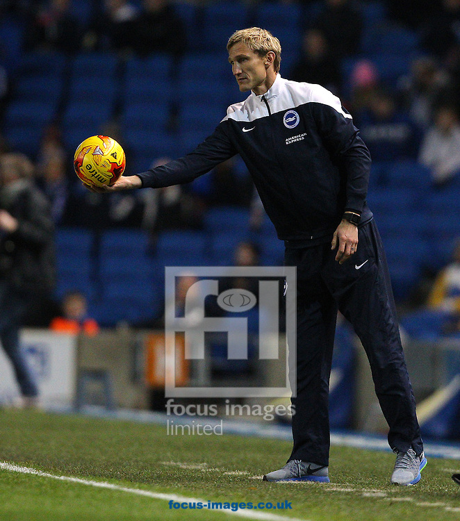 Sami Hyypia, Manager of Brighton and Hove Albion during the Sky Bet Championship match at the American Express Community Stadium, Brighton and Hove<br /> Picture by Paul Terry/Focus Images Ltd +44 7545 642257<br /> 12/12/2014