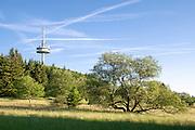 Funkturm, Naturschutzgebiet Hoherodskopf, Vogelsberg, Hessen, Deutschland | tower, nature reserve Hoherodskopf, Vogelsberg, Hesse, Germany