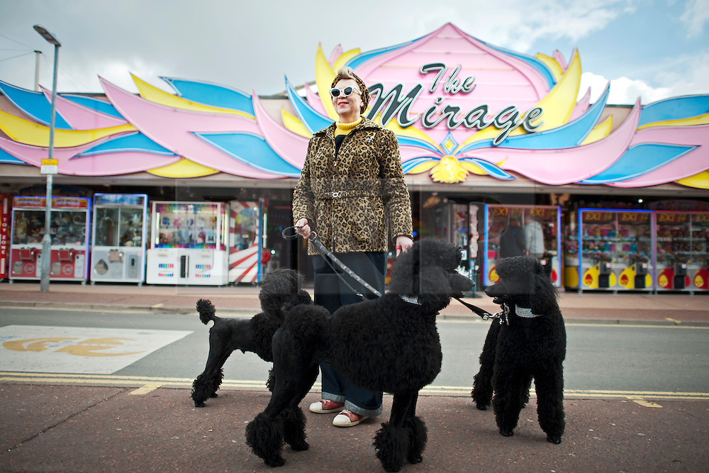 © London News Pictures. 12/05/2013. Hemsby, UK.  Melanie Calland poses for a picture while walking her poodles Charlie, Bettie and Dita through Hemsby town past the amusements as Rock and Roll enthusiasts gather at the Hemsby Rock 'n' Roll Weekender  in Hemsby, Norfolk. Twice a year rock and roll enthusiasts gather in the grounds of the Authentic 1950s Seacroft Holiday Site to re-live the 50's by dressing in keeping with the period and listening to live bands playing jive, hop, bop and Rock 'n' Roll. Photo credit: Ben Cawthra/LNP
