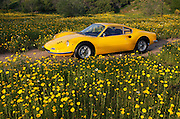 Image of a yellow classic vintage sports car on a dirt road, Ferrari Dino 246 GT coupe, Costa Mesa, California, American west coast, property released
