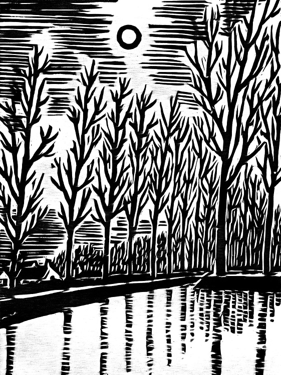 A black / white drawing of trees in winter on the river