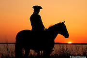 A Colonial rider pauses his horse at Sunset by the James River.