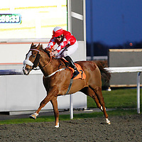 Kempton 6th March