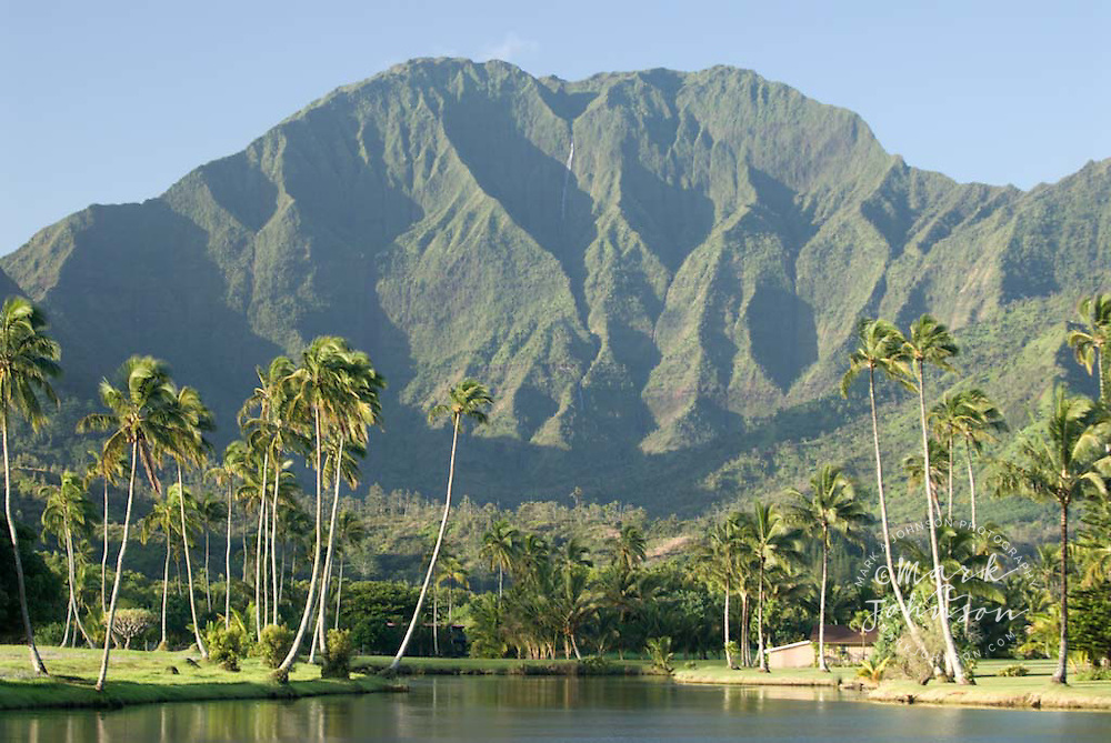 Mountains and palm trees at Hanalei, Kauai