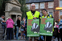 © Licensed to London News Pictures. 26/08/2013. Minehead, Somerset, UK.  Picture of Trevor and Janice Broom from Ilminster. People protesting against the planned badger cull gather hold a candlelit vigil and march in the town of Minehead in West Somerset which is one of the areas where badgers will be shot by marksmen in a pilot trial with the eventual aim of reducing bovine turberculosis in cattle.  28 August 2013.<br /> Photo credit : Simon Chapman/LNP