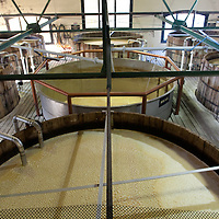 Four Roses Bourbon Distillery, Fermenting Room