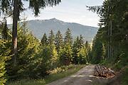 Wlad, Kleiner Osser, Lamer Winkel, Bayerischer Wald, Bayern, Deutschland   landscape Lamer Winkel, Bavarian Forest, Bavaria, Germany
