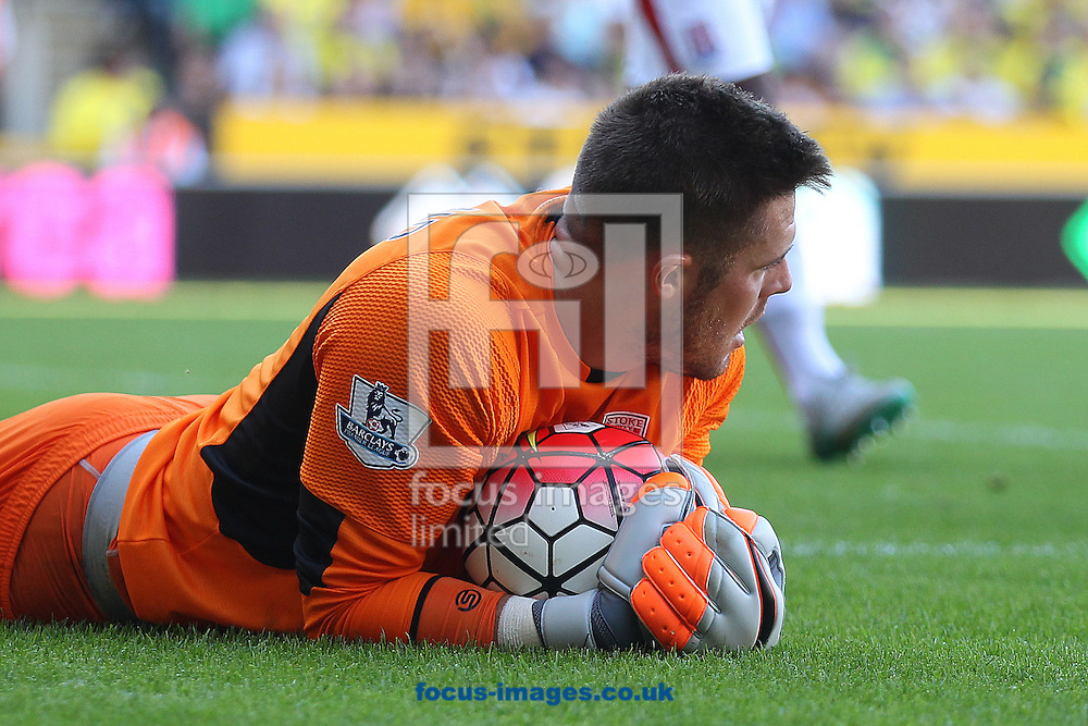 Jack Butland of Stoke City during the Barclays Premier League match at Carrow Road, Norwich<br /> Picture by Paul Chesterton/Focus Images Ltd +44 7904 640267<br /> 22/08/2015
