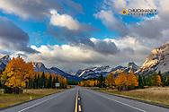 Morning light on Highway 40 in Kananaskis Country, Alberta, Canada