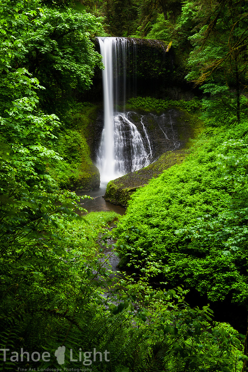 Walking on the trail behind Middle North Falls at the Silver Falls State park in northern Oregon. The lush greenery and waterfalls of the Pacific Northwest are a must visit.