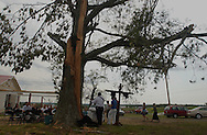 Rainsville, Alabama:  Members of Brown's Chapel Baptist Church, damaged by tornados, sing hyms and hold services under a sprawling, splintered oak tree on the first Sunday after tornados ripped through this northeastern Alabama town. Though their sanctuary, left, is safe for services, they decided to hold worship outdoors in solidarity with churches more damaged than theirs, and as a declaration of faith to passersby. (PHOTO: MIGUEL JUAREZ LUGO).