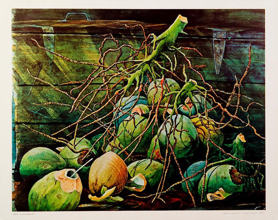 Cat.#29 - Print of a watercolor painting of a bunch of coconuts, a typical  scene in the Tropics. Printed in Italy on heavy weight, smooth stock.<br /> Paper size is 21 3/4 x 17 5/8&quot;. Image size is approximately 20 x 16&quot; <br /> Cat.#29 - Impresi&oacute;n de una pintura en acuarela de un racimo de cocos, una escena t&iacute;pica de paises tropicales. Impreso en Italia en papel pesado y liso.<br /> Tama&ntilde;o del papel es 21 3/4 x 17 5/8&quot;. Tama&ntilde;o de la imagen es aproximadamente 20 x 16&quot;