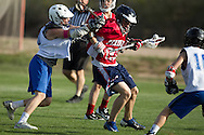 Phoenix Country Day School boys lacrosse team against Pinnacle on March 6, 2014.  PCDS won 4 to 2.