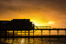 © Licensed to London News Pictures<br />