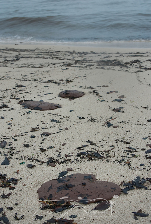 Tar patties of oil litter the beach in Gulfport, Miss. June 30, 2010. Mississippi had been largely spared from the effects of the Deepwater Horizon oil rig explosion April 20, 2010, but winds from Hurricane Alex began pushing oil ashore earlier this week, affecting beaches from Biloxi to Pass Christian. (Photo by Carmen K. Sisson/Cloudybright)