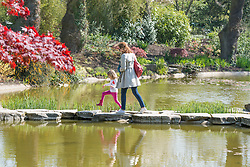 © Licensed to London News Pictures. 16/04/2014. Cliveden, UK A woman and child cross stepping stones int eh water garden.  People enjoy the   sunshine at Cliveden in Buckinghamshire today 16th April 2014. Photo credit : Stephen Simpson/LNP