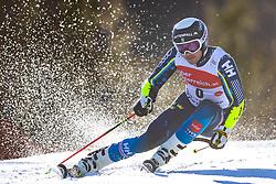 02.03.2020, Hannes Trinkl Weltcupstrecke, Hinterstoder, AUT, FIS Weltcup Ski Alpin, Riesenslalom, Herren, 1. Lauf, im Bild Matts Olsson (SWE) // Matts Olsson of Sweden in action during 1st run of men's Giant Slalom of FIS ski alpine world cup at the Hannes Trinkl Weltcupstrecke in Hinterstoder, Austria on 2020/03/02. EXPA Pictures © 2020, PhotoCredit: EXPA/ Johann Groder