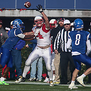 Smyrna defensive lineman AnthonyDelRe (24) attempt to deflect the pass during the DIAA division one Football Championship game between Top-seeded Middletown (11-0) and second-seeded Smyrna (11-0) Saturday, Dec. 03, 2016 at Delaware Stadium in Newark.