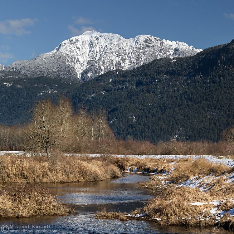 Fresh snow covers the Golden Ears (Mount Blandshard) on a winter day in Pitt Addington Marsh.  Photographed from Smohk'wa Marsh in Pitt Meadows, British Columbia, Canada