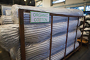 Organic cotton being produced at Pratibha Syntax factory, where organic cotton is being used to make clothes, Indore, India.