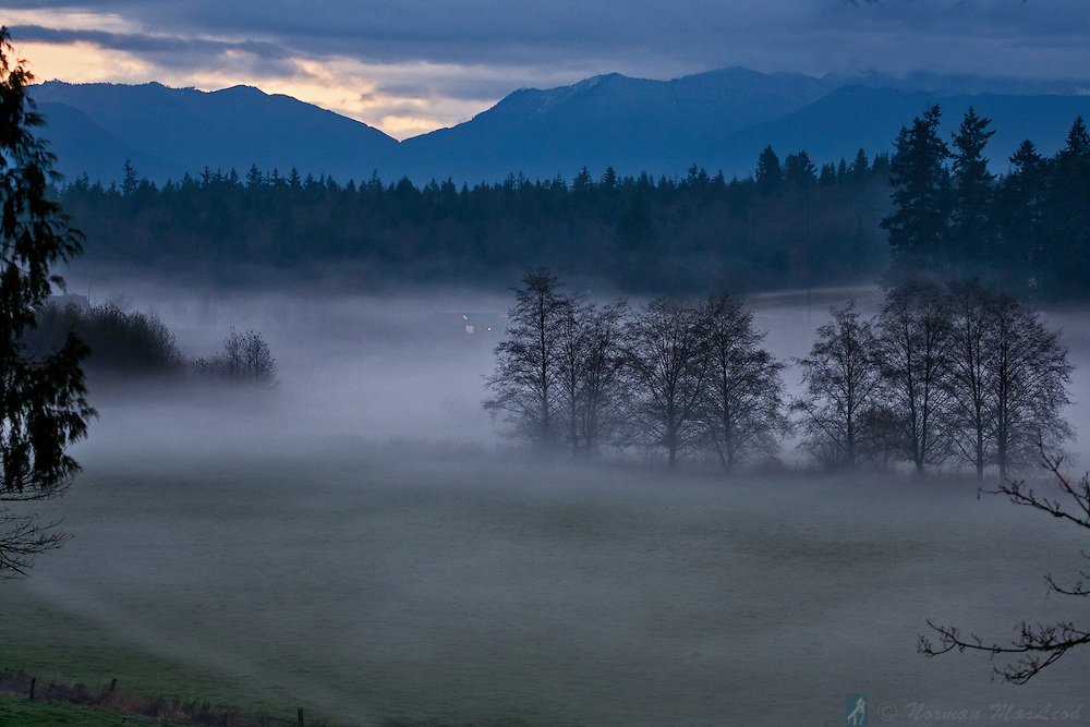Foggy evening in Center Valley on Washington's Olympic Peninsula near Chimacum