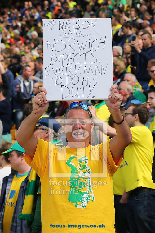 A Norwich City fan celebrates following the 3-1 win over Ipswich Town during the Sky Bet Championship match at Carrow Road, Norwich<br /> Picture by Richard Calver/Focus Images Ltd +44 7792 981244<br /> 16/05/2015
