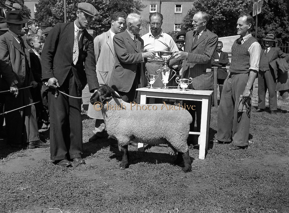 13/08/1952<br /> 08/13/1952<br /> 13 August 1952<br /> Show: Suffolk Sheep Society, South of Ireland Branch, 27th Annual Suffolk Sheep Show.