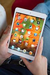 Using iPad mini tablet computer