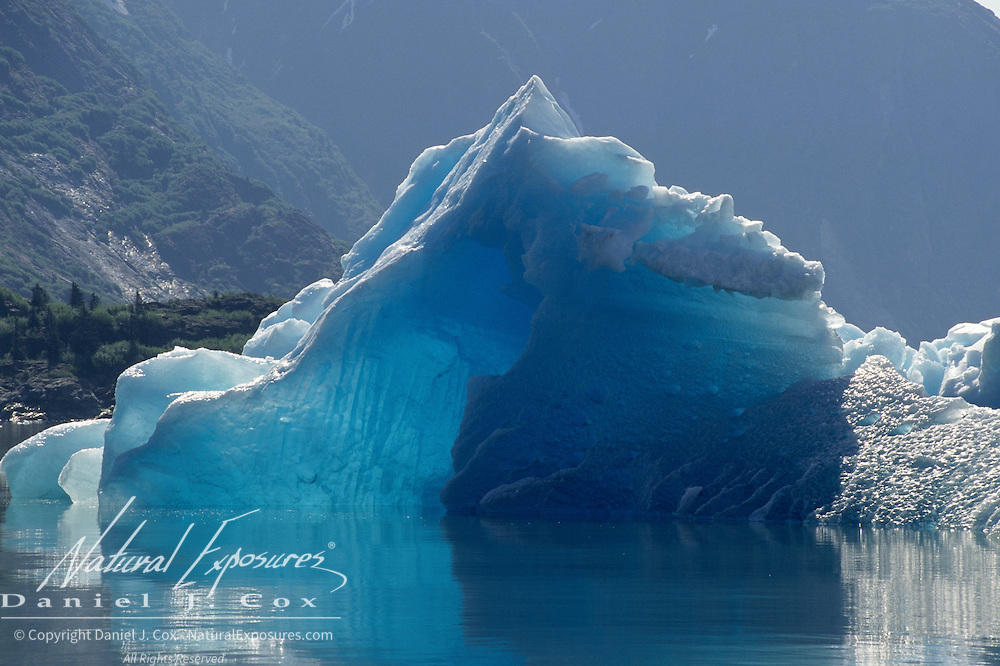 Sawyer Glacier in Tracy Arm of southeast Alaska.