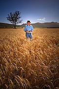 Wheat Farmer, Narrabri, NSW, Australia