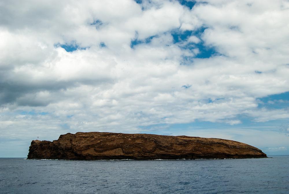 A Maui Adventure 2014